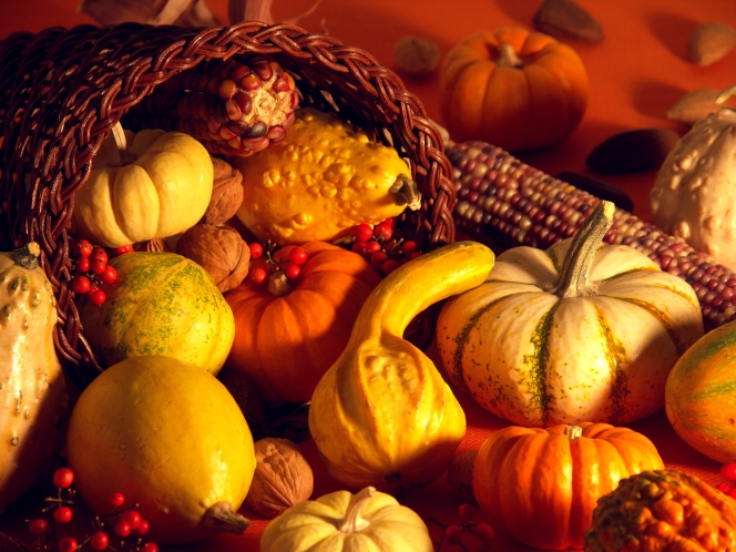 thanksgiving-scene-decoration